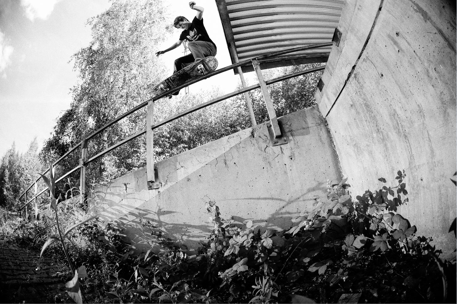 Sascha Scharf - BS 50-50 Pop Over